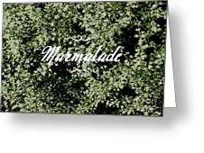 Marmalade Greeting Card
