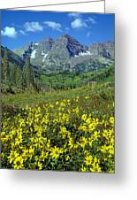 210403-v-maroon Bells And Sunflowers  Greeting Card