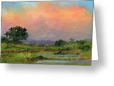 Marsh Greeting Card