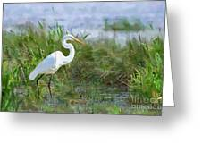 Marsh Egret Greeting Card