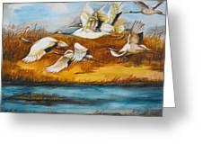Marsh Flight Greeting Card