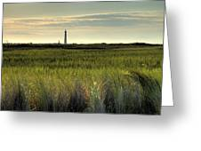 Marsh Grass And Morris Island Lighthouse Greeting Card
