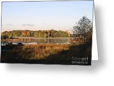 Marsh Morning Greeting Card