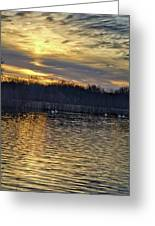 Marsh Ripple Pond Greeting Card