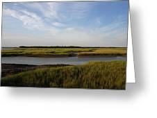 Marsh Scene Charleston Sc Greeting Card