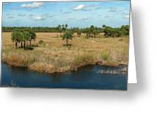Marshland Greeting Card
