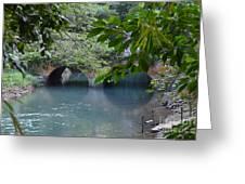 Martha Brae River Greeting Card