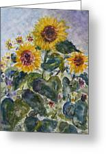 Martha's Sunflowers Greeting Card