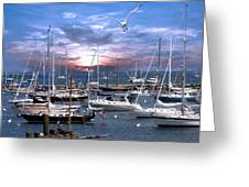 Martha's Vineyard Greeting Card