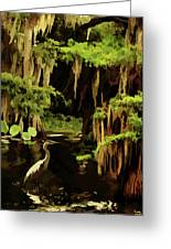 Martin Dies Jr. State Park Greeting Card
