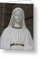 Mary Statue At Sacred Heart In Tampa Greeting Card