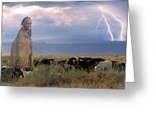 Masaii Cattle Greeting Card