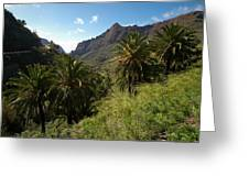 Masca Valley And Parque Rural De Teno 2 Greeting Card