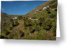 Masca Valley And Parque Rural De Teno 3 Greeting Card