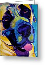 Mastiff - Lazy Sunday Greeting Card