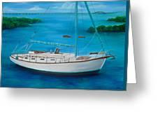 Matilda In The Florida Keys Greeting Card