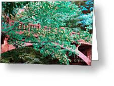 Matthiessen State Park Bridge False Color Infrared No 1 Greeting Card