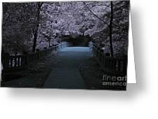Matthiessen State Park Bridge False Color Infrared No 2 Greeting Card
