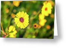 Mattina Gialla Greeting Card