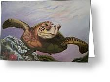 Maui Sea Turtle Greeting Card