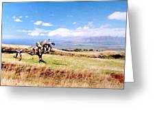 Maui Upcountry Greeting Card