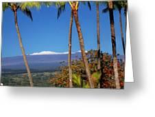 Mauna Kea  Greeting Card