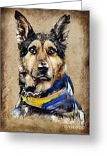 Max The Military Dog Greeting Card