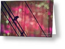 May 14 2010 Greeting Card