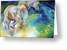 May Waterbaby Equine Greeting Card