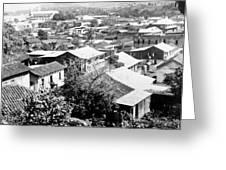 Mayaguez - Puerto Rico - C 1900 Greeting Card