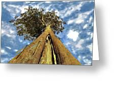 Mayflies On The Eucalyptus Viminalis Greeting Card