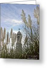 Mayflower Memorial Through The Pampas Grass Greeting Card