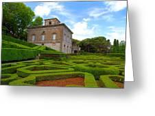 Mazed Garden Greeting Card
