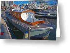 Mb 172 Epic Lass In Darling Harbour Greeting Card