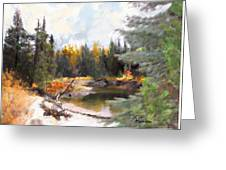 Mccall Landscape Greeting Card