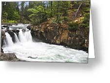 Mccloud Lowerfalls Greeting Card