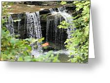 Mccoy Falls From The Road Greeting Card