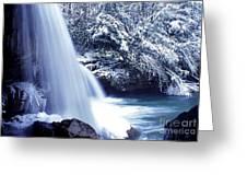 Mccoy Falls In January Greeting Card by Thomas R Fletcher