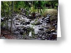 Mcdonald Lake Stream Greeting Card
