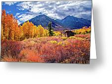 Mcgee Creek Majesty Greeting Card