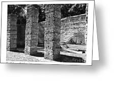 Mcintosh Sugar Mill Tabby Ruins 1825  Greeting Card