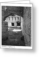 Mcintosh Sugar Mill Tabby Ruins Arch Greeting Card