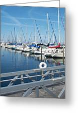 Mckinley Marina 5 Greeting Card