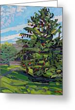 Mcmichael Spruce Greeting Card