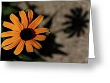 Me N My Shadow Greeting Card