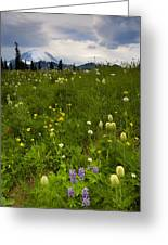 Meadow Beneath The Storm Greeting Card