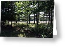 Meadow Beyond Greeting Card