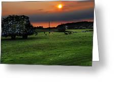 Meadow Field Greeting Card