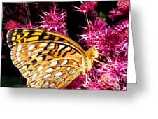 Meadow Fritillary Greeting Card