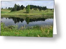 Meadow Greeting Card